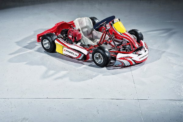 Delfino Kart Rental With Honda Engine