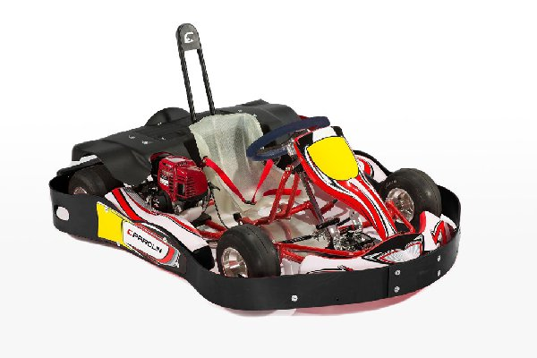 DELFINO KART RENTAL COMPLETE WITH 50CC HONDA ENGINE AND ADJUSTABLE PEDALBOARD